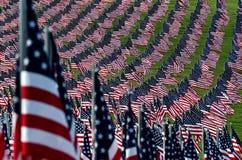 Feld der amerikanischen Flagge Stockbild