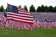 Feld der amerikanischen Flagge Lizenzfreie Stockfotos