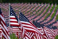 Feld der amerikanischen Flagge Lizenzfreies Stockfoto