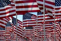 Feld der amerikanischen Flagge Lizenzfreies Stockbild