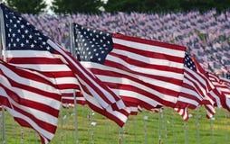 Feld der amerikanischen Flagge Lizenzfreie Stockbilder