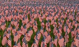 Feld der amerikanischer Flaggen Lizenzfreie Stockbilder