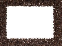 Feld der Kaffeebohnen Stockfoto