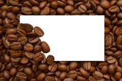 Feld der Kaffeebohnen Stockfotos