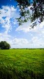 Feld in der Landschaft Lizenzfreie Stockfotos