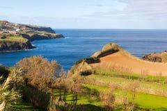 Feld an der Ozeanküste, Azoren, Portugal Lizenzfreie Stockbilder