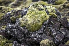 Feld der vulkanischen vulkanischen Lava, Island Lizenzfreie Stockbilder