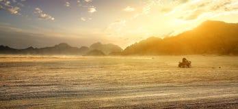 Feld in der Wüste Lizenzfreies Stockbild