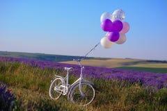Feld des blühenden Lavendels mit heiratendem weißem Fahrrad und baloon lizenzfreie stockbilder