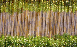 Blumen- und Bambusrahmen Lizenzfreies Stockfoto