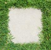 Feld des grünen Grases Stockfotos