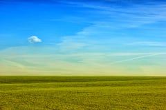 Feld des grünen Grases gegen einen blauen Himmel mit wispy weißen Wolken Grüne Rasenfläche gegen einen blauen Himmel Lizenzfreie Stockfotos