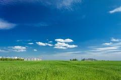 Feld des grünen Grases und der Stadt auf dem Horizont Lizenzfreies Stockfoto