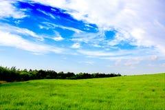 Feld des grünen Grases und des blauen Sonnehimmels Lizenzfreie Stockfotografie