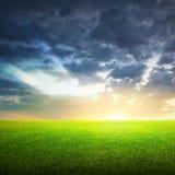 Feld des grünen Grases und des Himmels Lizenzfreie Stockfotos