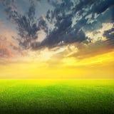 Feld des grünen Grases und des Himmels Lizenzfreie Stockbilder