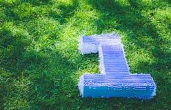 Feld des Grases, eine Zahl Nummer Eins nahe großem Spielzeugballon, der Geburtstag des ersten Jahres des Lebens Lizenzfreie Stockbilder