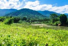 Feld des Grases und der Blumen Hügel und blauer Himmel mit Wolken Fluss und Brücke Stockfotografie