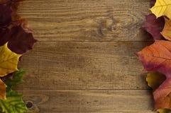 Feld des Herbstahornblattes auf einem alten Holztisch Lizenzfreies Stockfoto
