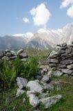 Feld des Kornes und der Berge Lizenzfreies Stockbild