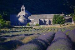 Feld des Lavendels vor Abtei Lizenzfreie Stockbilder