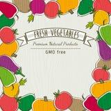 Feld des organischen Gemüses, Vektor Lizenzfreies Stockbild