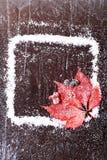 Feld des Schnees mit einem roten Blatt auf einer dunklen hölzernen Broschüre des Hintergrundverschneiten winters Lizenzfreie Stockbilder