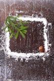 Feld des Schnees mit einem Weihnachtsbaum und ein Stoß auf einer dunklen hölzernen Broschüre des Hintergrundverschneiten winters Stockbild