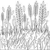 Feld des Weizens, der Gerste oder des Ryes Schwarzweiss-Malbuchseite Stockbild