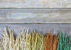 Feld des Weizens oder des ungeschälten Reises, wie schöne Blumen auf hölzernem Hintergrund Stockfotos