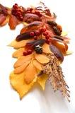 Feld, eine Ecke des Herbstlaubs und Früchte Stockbild