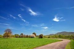 Feld für Ackerbau Stockfotografie