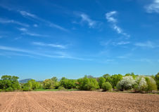 Feld für Ackerbau Lizenzfreies Stockbild