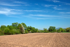 Feld für Ackerbau Lizenzfreies Stockfoto