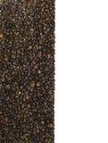 Feld gebildet von den Kaffeebohnen Lizenzfreie Stockfotos