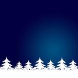 Feld gebildet von den weißen Weihnachtsbäumen Stockfotos