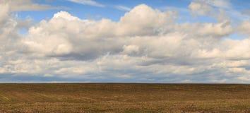Feld gegen den Himmel mit Wolken im Frühjahr Stockfotos