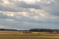 Feld gegen den Himmel mit Wolken im Frühjahr Lizenzfreies Stockfoto