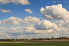 Feld gegen den Himmel mit Wolken im Frühjahr Stockbilder