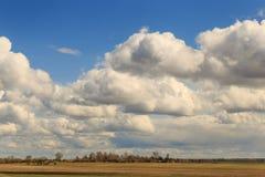 Feld gegen den Himmel mit Wolken im Frühjahr Stockbild