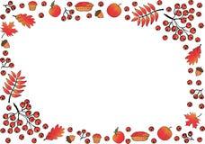 Feld gemacht von den Eichenblättern, Eberesche und Ahorn, Niederlassungen und Ebereschenbeeren, Eicheln, Kürbisäpfel, Torten, Muf stock abbildung