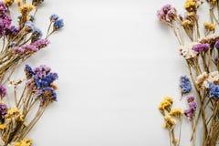 Feld gemacht von getrockneten farbigen Blumen auf weißem Hintergrund Platz für Text und Design Stockbild