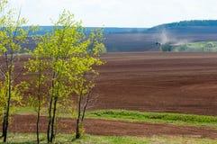 Feld gepflogen, gesäte Getreide lizenzfreie stockfotos