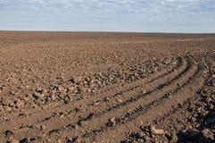 Feld gepflogen, gesäte Getreide lizenzfreies stockfoto