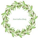 Feld Grenze, Kranz der Niederlassungen der grünen Oliven, gemalt in einem Aquarell auf einem weißen Hintergrund, Grußkarte, Dekor Stockfotografie