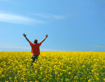 Feld, Himmel und der Mann Stockbilder