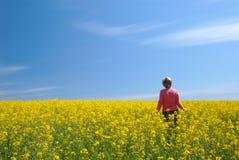 Feld, Himmel und die Frau Lizenzfreies Stockfoto