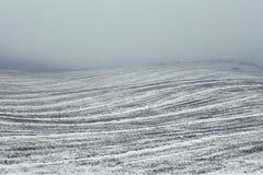 Feld im Dunst in der Winterzeit Stockbilder