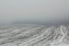Feld im Dunst in der Winterzeit Stockfotos