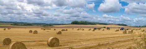 Feld im Herbst lizenzfreie stockfotografie